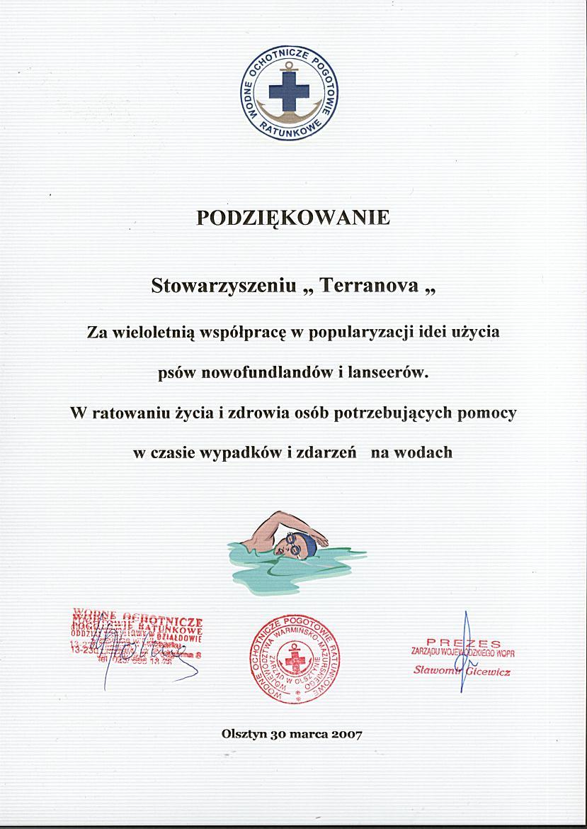 Dyplom_WOPR